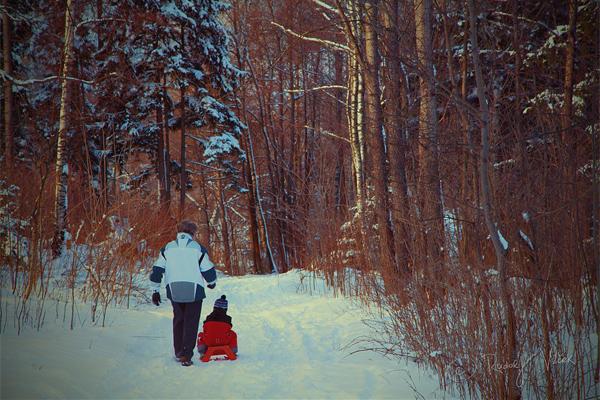 Winter by Rudolf Vlcek