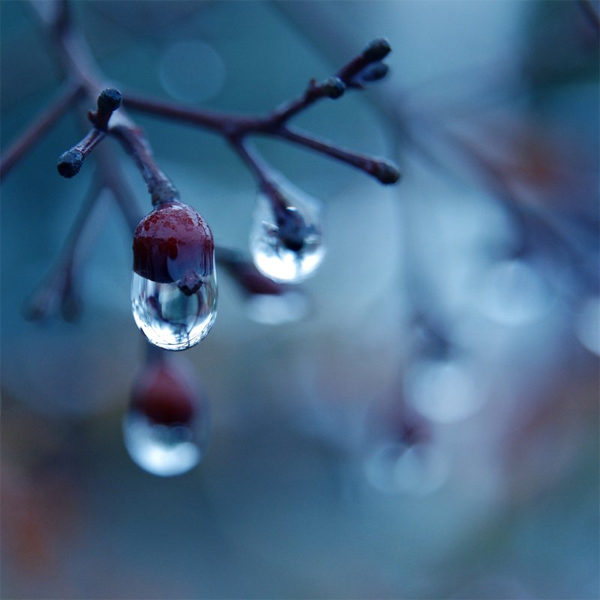 41-tutorial-fotografia-invernale